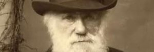 Ewolucjonizm